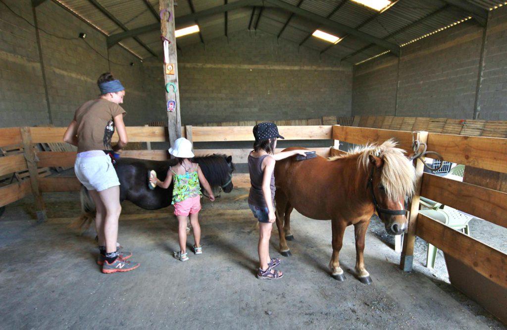 Découverte des animaux dans un camping dans le Tarn