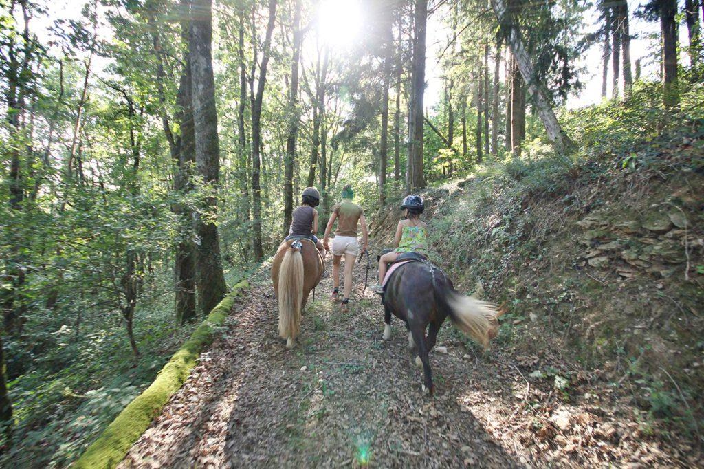 Balade à poney dans les reliefs du Tarn