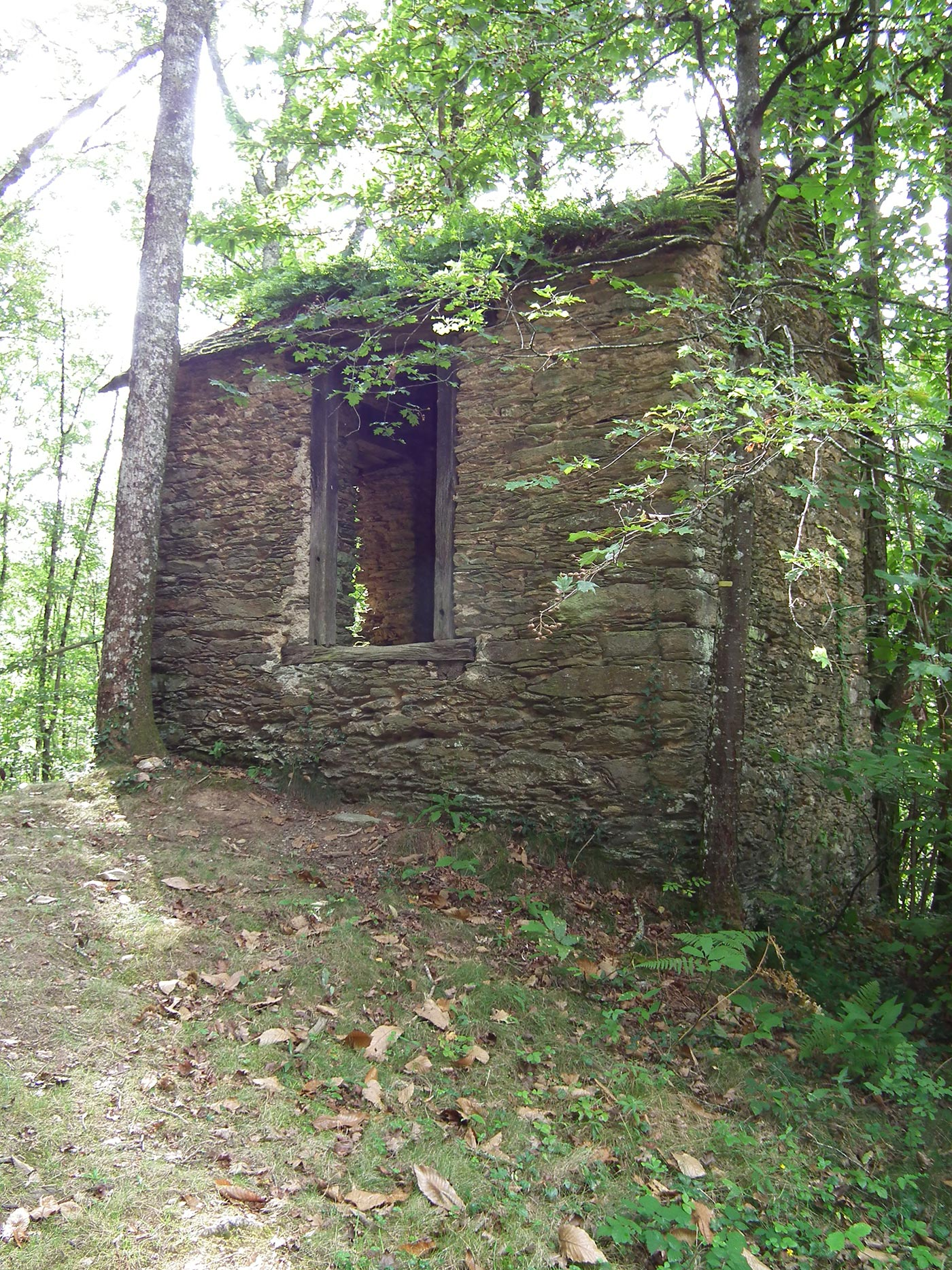 le sentier des cabanes camping le domaine de la vall e du tarn. Black Bedroom Furniture Sets. Home Design Ideas
