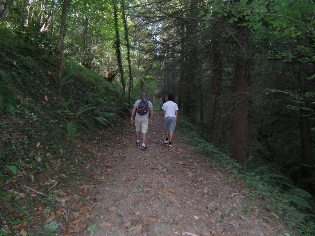 Sentier pédestre dans le Tarn